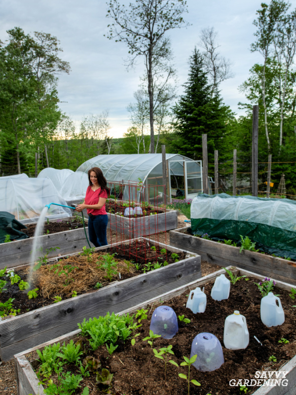 Using garden covers can extend your season and protect crops