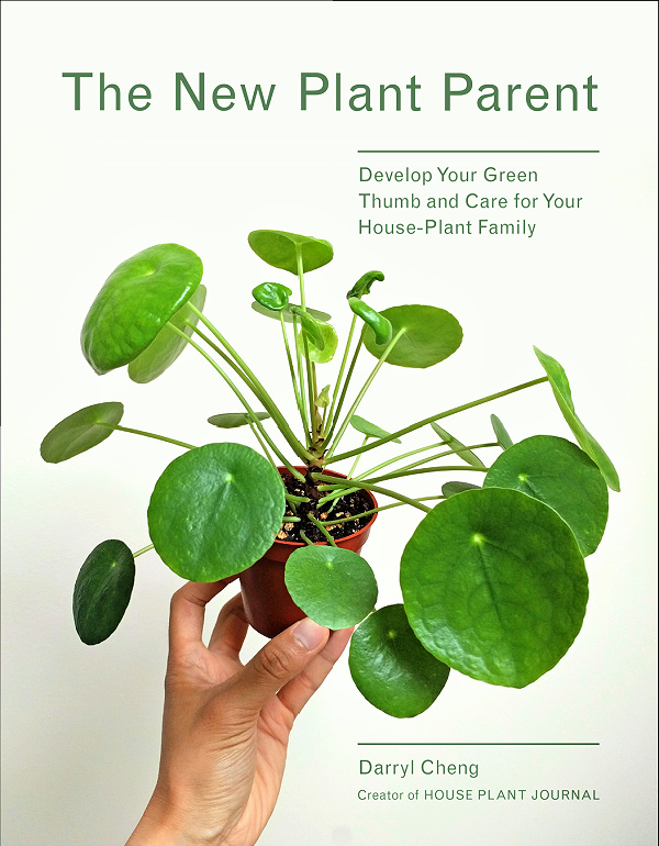 The New Plant Parent book helps us to understand light for house plants