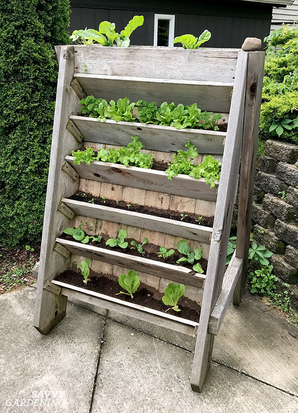 a vertical raised bed