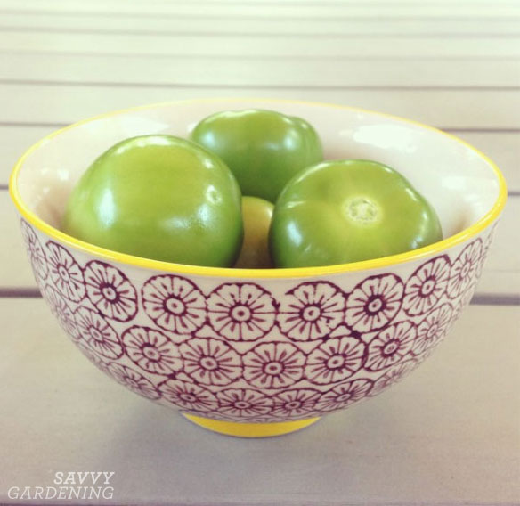 husked tomatillos in a bowl