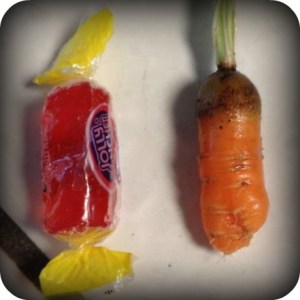 beckie-carrot