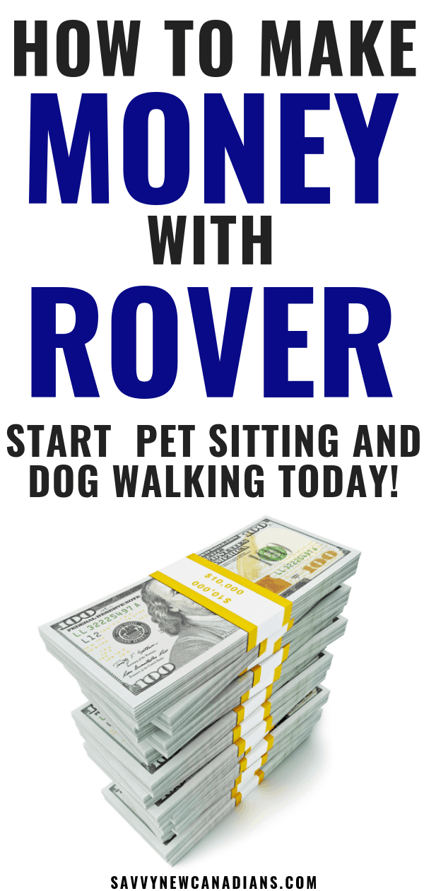 make money pet sitting and dog walking with rover