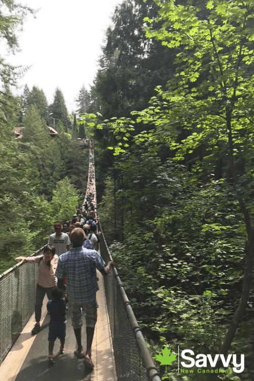 Capilano Suspension Bridge Savvy New Canadians