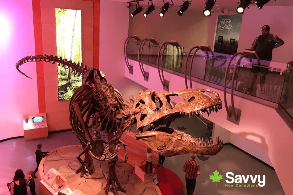 Royal Saskatchewan Museum - Scotty