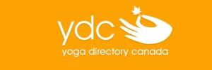 ydc_logo2
