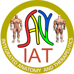 Integrated Anatomy and Therapeutics