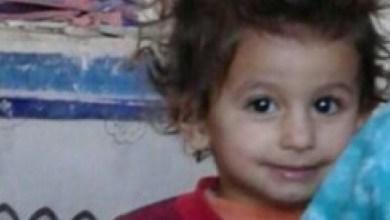 Photo of العثور على جثة نهشتها الكلاب تعود للطفلة المفقودة أمل