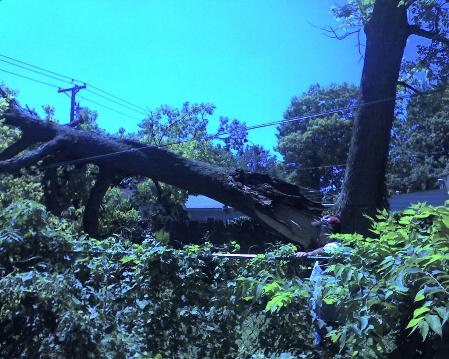 Storm Damage Service