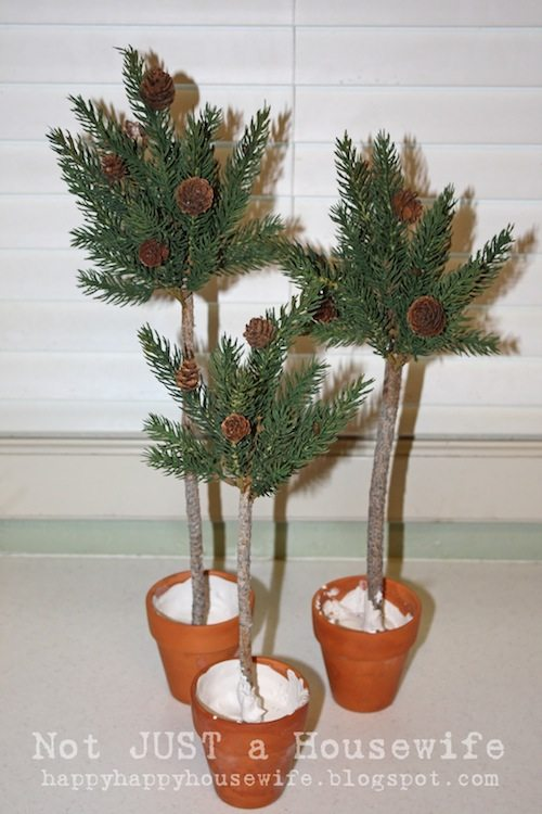 pine tree topiary 2