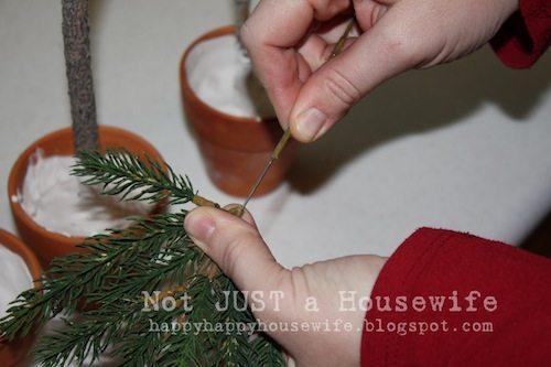 pine tree topiary 6