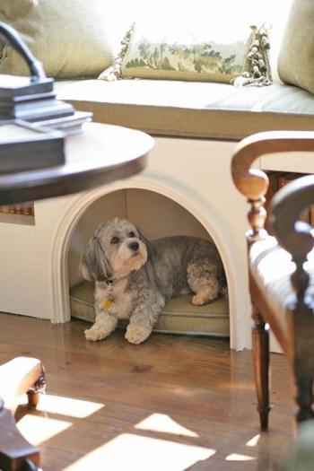 8 Creative DIY Dog Bed Ideas