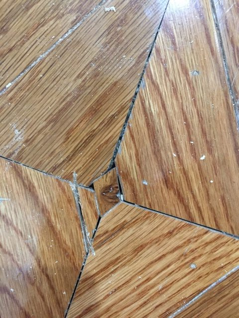 Replacing Wood Floor Decorative Insert Sawdust Girl