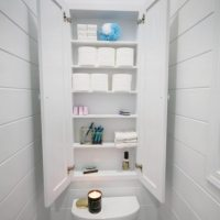 Recessed Wall Cabinet for Toilet Paper Storage