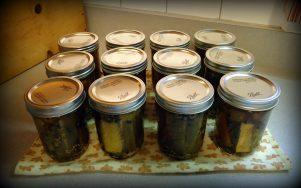 pickles 7.19