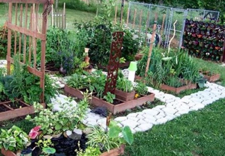 garden bed how to make