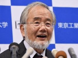 Professor Yoshinori Ohsumi Oo Soo Bandhigay Cilmi-Baadhis Uu Ku Ibo- Furay Mucjisada Soonka