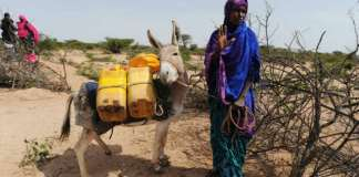 Climate Change In Somaliland — 'You Can Touch It'