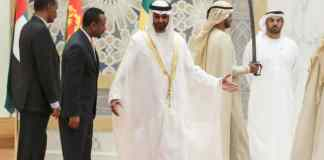 Why Are Gulf Countries So Interested In The Horn Of Africa?