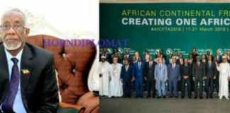 Somaliland Participates In The Niger AfCFTA Summit