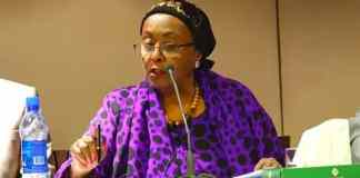 Video: Edna Adan Briefs International Media On Somaliland President's Visit To Guinea
