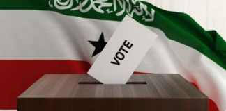 Statement By Initiative And Referendum Institute On Somaliland Observation Team
