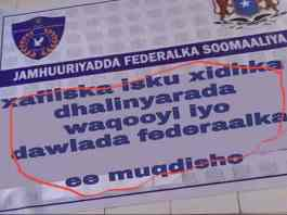 More Than Thirty Reporters In Somaliland Get Payments From Villa Somalia