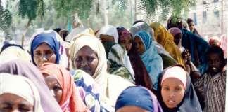 Somaliland: Democratization And Its Discontents