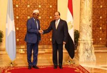 Egypt Could Face Blowback From Somalia Weapons Deal