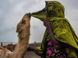 Somaliland – For These Women, An Age-Old Way Of Life Is Ending In The Horn Of Africa