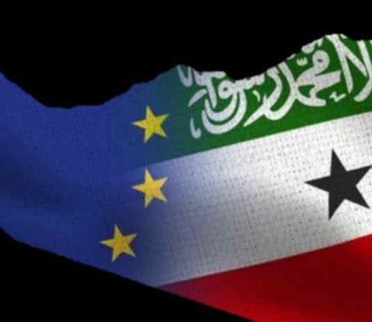 EU Funded Project On The Durable Solutions Deliver Medical Supplies For Somaliland COVID-19 Response