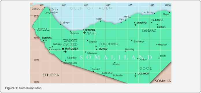Somaliland Oil and Gas Exploration Attempt Prospects of Opportunities and Challenges