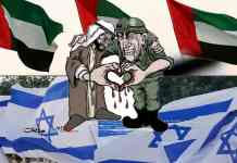 Somaliland Joins World In Hailing UAE-Israel Peace Deal