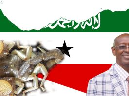 Somaliland Scientist Who Has A Scorpion Named After Him