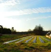 Cane Creek Farms Tasting