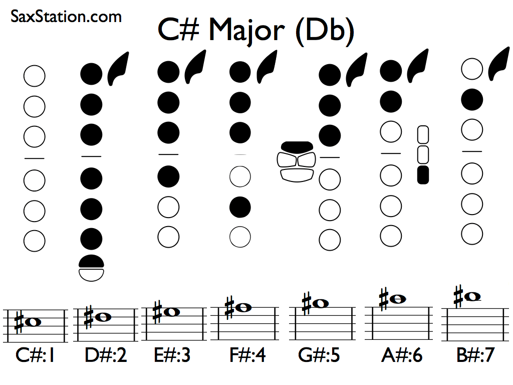 What Scales Do I Actually Need To Practice