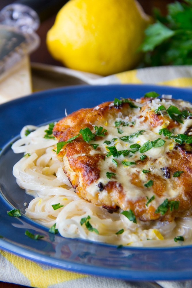 Creamy Lemon Chicken & Noodles
