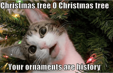 Merry Christmas Friend Meme