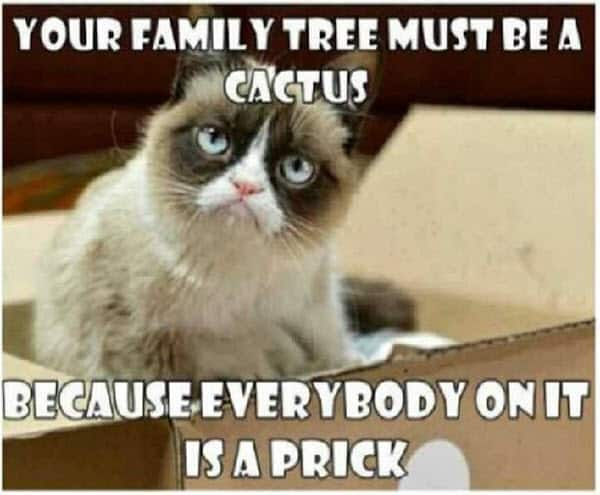 30 Hilarious Family Memes You Ll Relate To Sayingimages Com