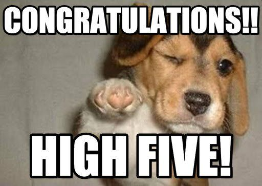 Image result for congratulations memes funny