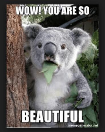 20 Beautiful Memes To Share Today Sayingimages Com