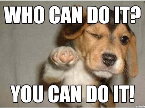 25 You Can Do It Memes That Are 100 Encouraging Sayingimages Com