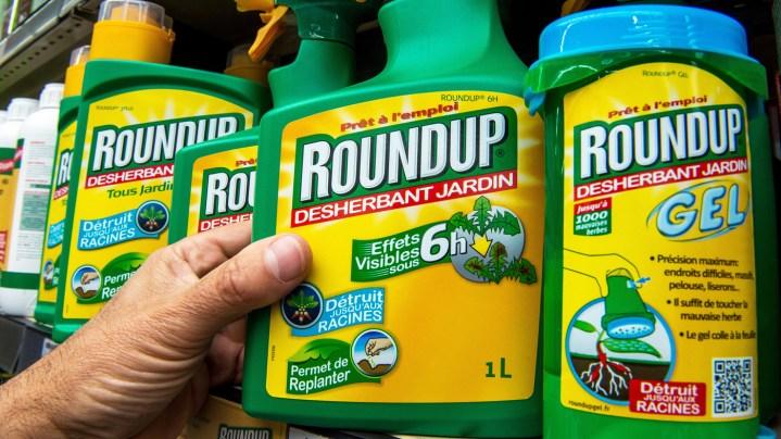 Delta monarch dies After taking Herbicide