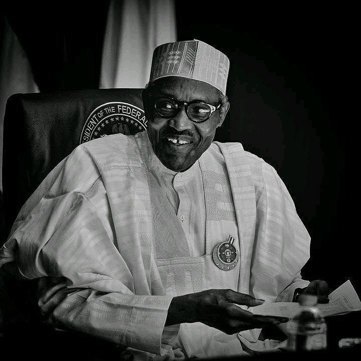 Focus On Facts Not Fiction, President Buhari Tells Transparency International