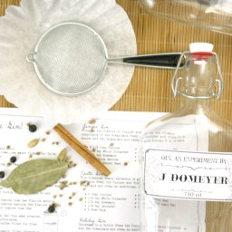 DIY Gin Kit By SayNotSweetAnne