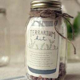 Terrarium Kit By Wit & Whistle