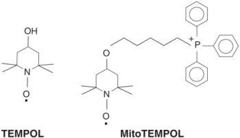 TEMPOL and MitoTEMPOL