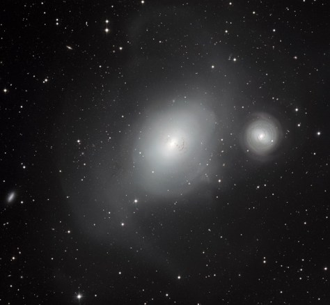 The contrasting galaxies NGC 1316 and 1317 (Credit: ESO)