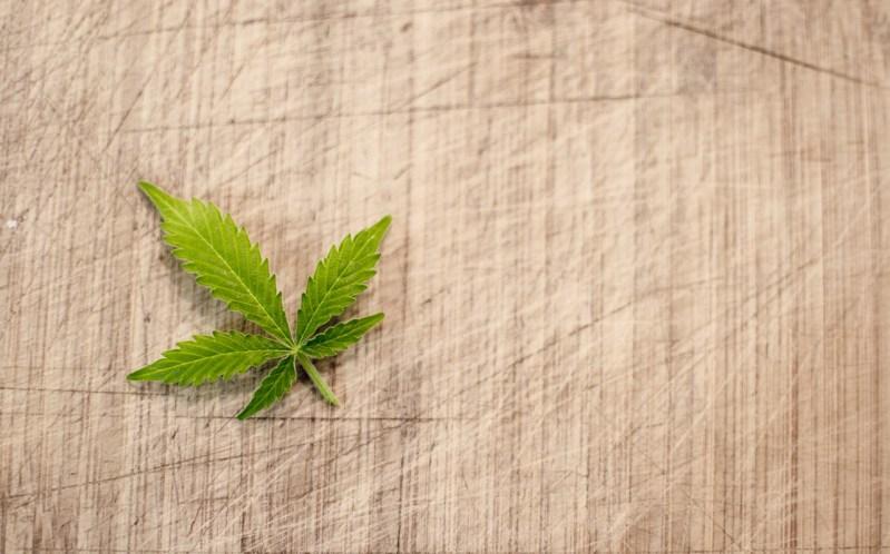 Cannabis (Image source: Pixabay)