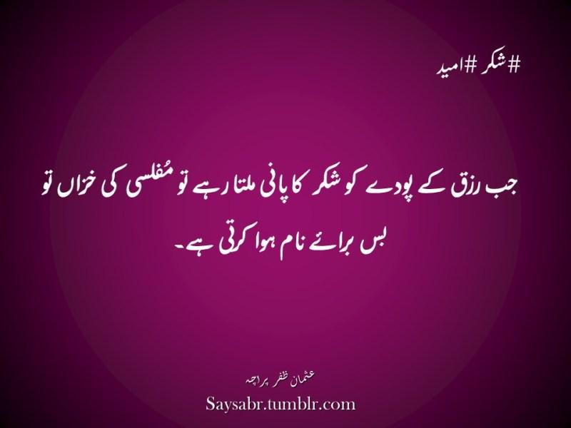 "#shukar #umeedJab rizq kay poday ko shukar ka paani milta rahay to muflisi ki khizan to bus baraaey naam hua karti hai.NB. Get eBook of Usman Zafar Paracha's quotations in Urdu – ""میرے خیالات"" - http://amzn.to/29gFPKD Join Usman on Facebook - https://www.facebook.com/usmanzparacha"