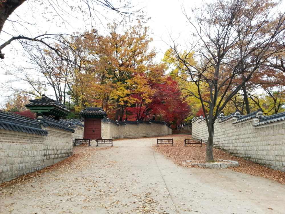 Travel Photographer | Autumn 창덕궁 (Changdeokgung) Seoul South Korea